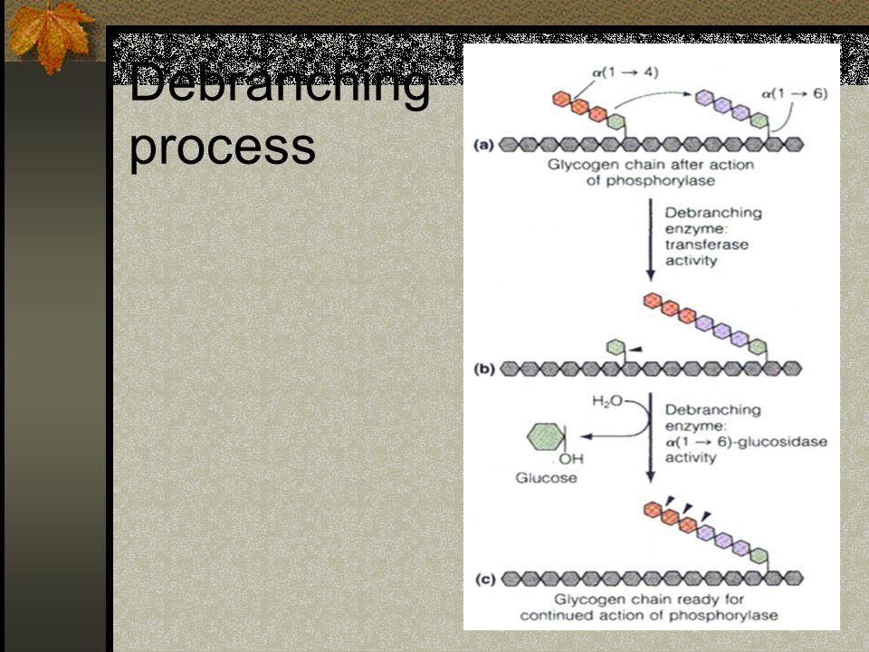 Debranching process