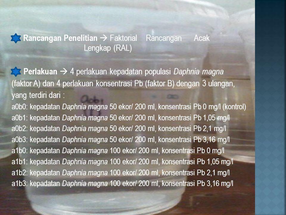 Rancangan Penelitian  Faktorial Rancangan Acak Lengkap (RAL) Perlakuan  4 perlakuan kepadatan populasi Daphnia magna (faktor A) dan 4 perlakuan konsentrasi Pb (faktor B) dengan 3 ulangan, yang terdiri dari : a0b0: kepadatan Daphnia magna 50 ekor/ 200 ml, konsentrasi Pb 0 mg/l (kontrol) a0b1: kepadatan Daphnia magna 50 ekor/ 200 ml, konsentrasi Pb 1,05 mg/l a0b2: kepadatan Daphnia magna 50 ekor/ 200 ml, konsentrasi Pb 2,1 mg/l a0b3: kepadatan Daphnia magna 50 ekor/ 200 ml, konsentrasi Pb 3,16 mg/l a1b0: kepadatan Daphnia magna 100 ekor/ 200 ml, konsentrasi Pb 0 mg/l a1b1: kepadatan Daphnia magna 100 ekor/ 200 ml, konsentrasi Pb 1,05 mg/l a1b2: kepadatan Daphnia magna 100 ekor/ 200 ml, konsentrasi Pb 2,1 mg/l a1b3: kepadatan Daphnia magna 100 ekor/ 200 ml, konsentrasi Pb 3,16 mg/l