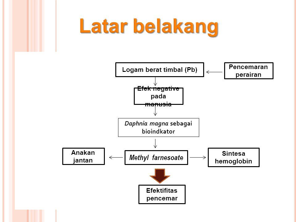 P ARAMETER P ENELITIAN Parameter utama  Parameter utama  Pengamatan Perubahan Warna dan Ratio Sex Anakan Jantan Daphnia magna.