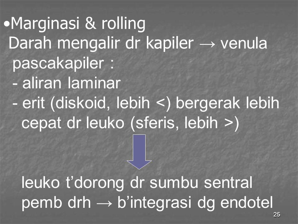 25 Marginasi & rolling Darah mengalir dr kapiler → venula pascakapiler : - aliran laminar - erit (diskoid, lebih ) leuko t'dorong dr sumbu sentral pem