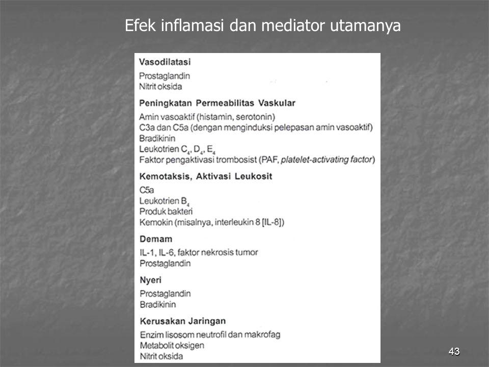 43 Efek inflamasi dan mediator utamanya