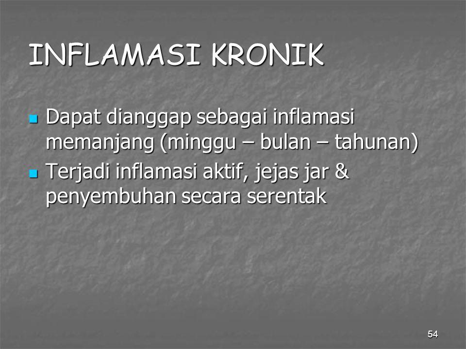 54 INFLAMASI KRONIK Dapat dianggap sebagai inflamasi memanjang (minggu – bulan – tahunan) Dapat dianggap sebagai inflamasi memanjang (minggu – bulan –