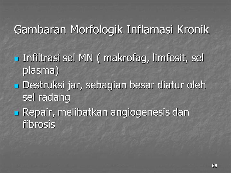 56 Gambaran Morfologik Inflamasi Kronik Infiltrasi sel MN ( makrofag, limfosit, sel plasma) Infiltrasi sel MN ( makrofag, limfosit, sel plasma) Destru