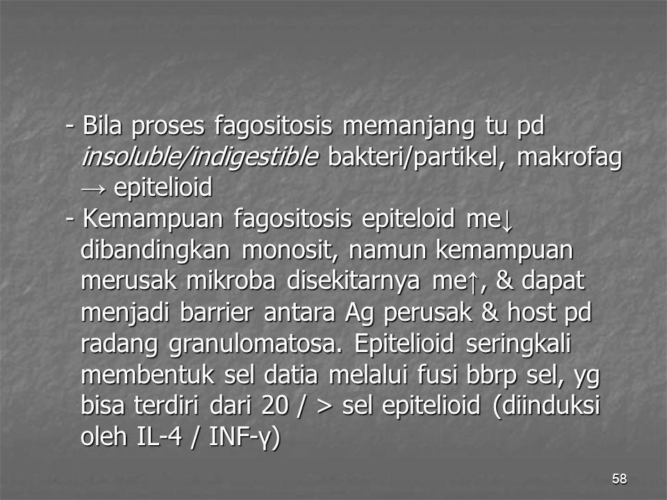 58 - Bila proses fagositosis memanjang tu pd insoluble/indigestible bakteri/partikel, makrofag insoluble/indigestible bakteri/partikel, makrofag → epi