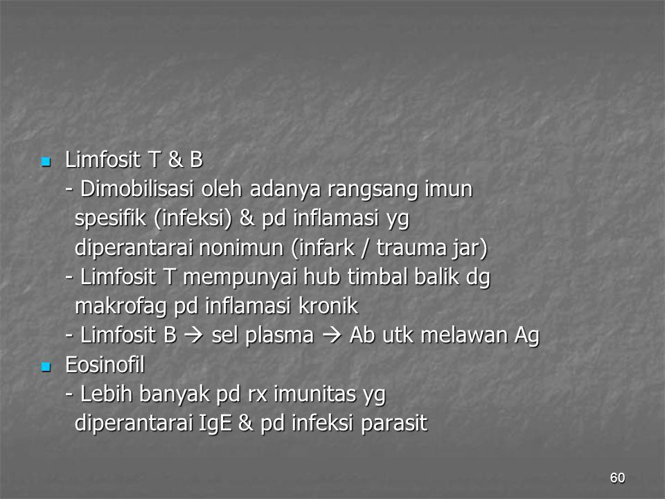 60 Limfosit T & B Limfosit T & B - Dimobilisasi oleh adanya rangsang imun spesifik (infeksi) & pd inflamasi yg spesifik (infeksi) & pd inflamasi yg di