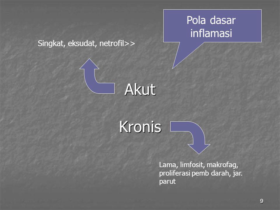 9 Akut Kronis Pola dasar inflamasi Singkat, eksudat, netrofil>> Lama, limfosit, makrofag, proliferasi pemb darah, jar. parut