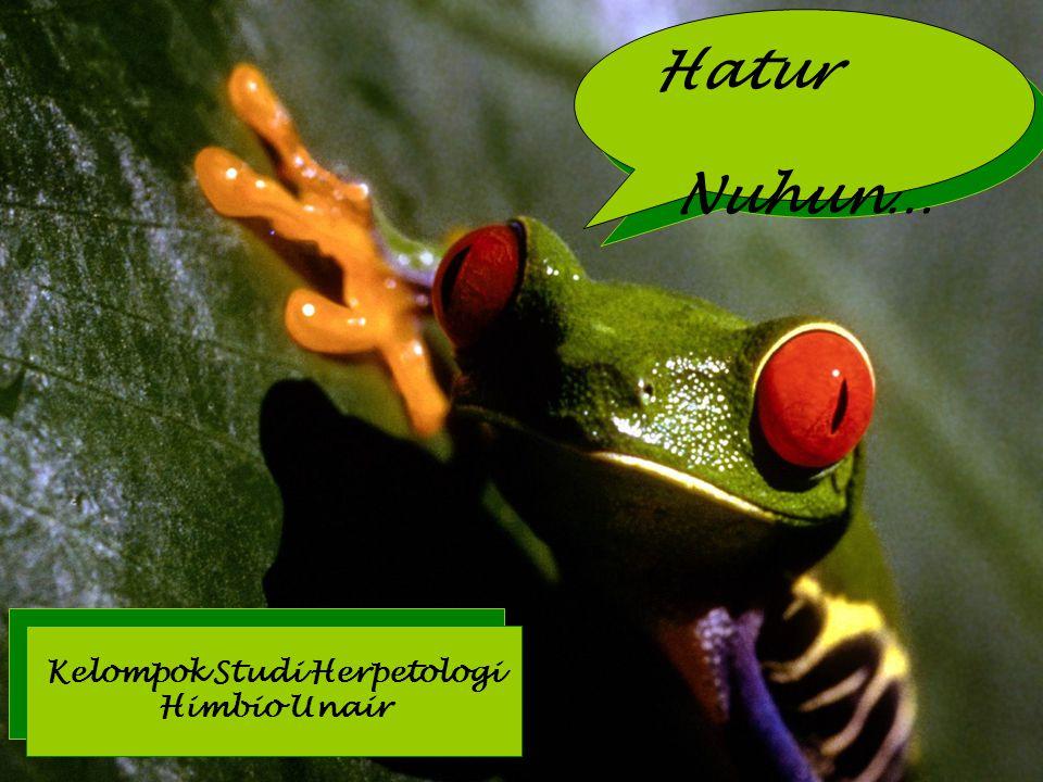 Hatur Nuhun… Kelompok Studi Herpetologi Himbio Unair