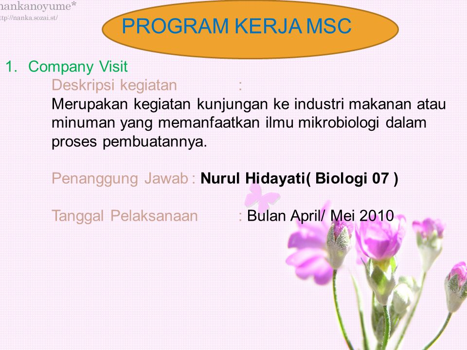 PROGRAM KERJA MSC 1.