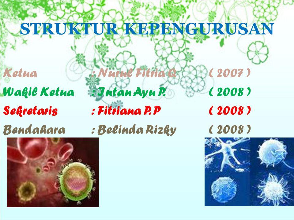 STRUKTUR KEPENGURUSAN Ketua: Nurul Fitria Q ( 2007 ) Wakil Ketua: Intan Ayu P.( 2008 ) Sekretaris: Fitriana P. P( 2008 ) Bendahara: Belinda Rizky ( 20
