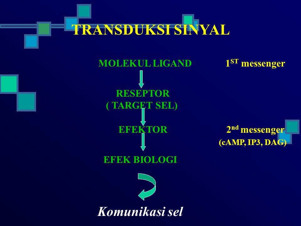 RESEPTOR *RESEPTOR TRANSMEMBRAN - IKT.ENZIM - KANAL ION - IKT.