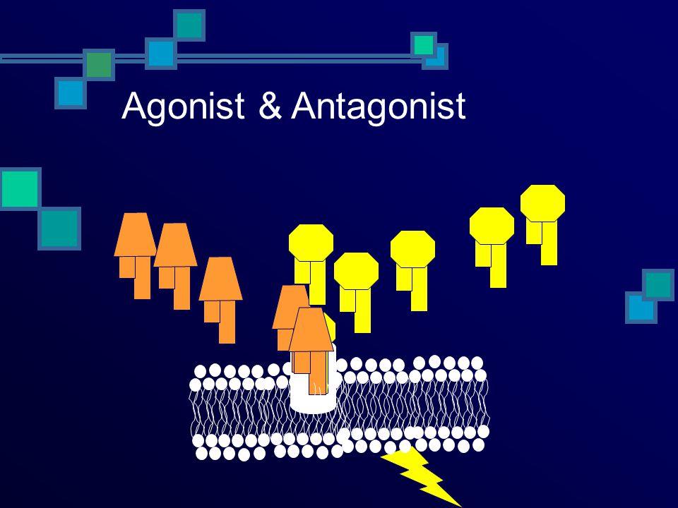 Agonist vs antagonist Ag K +1 K -1 Ag Ant K +1 K -1 + + Response Ant R R