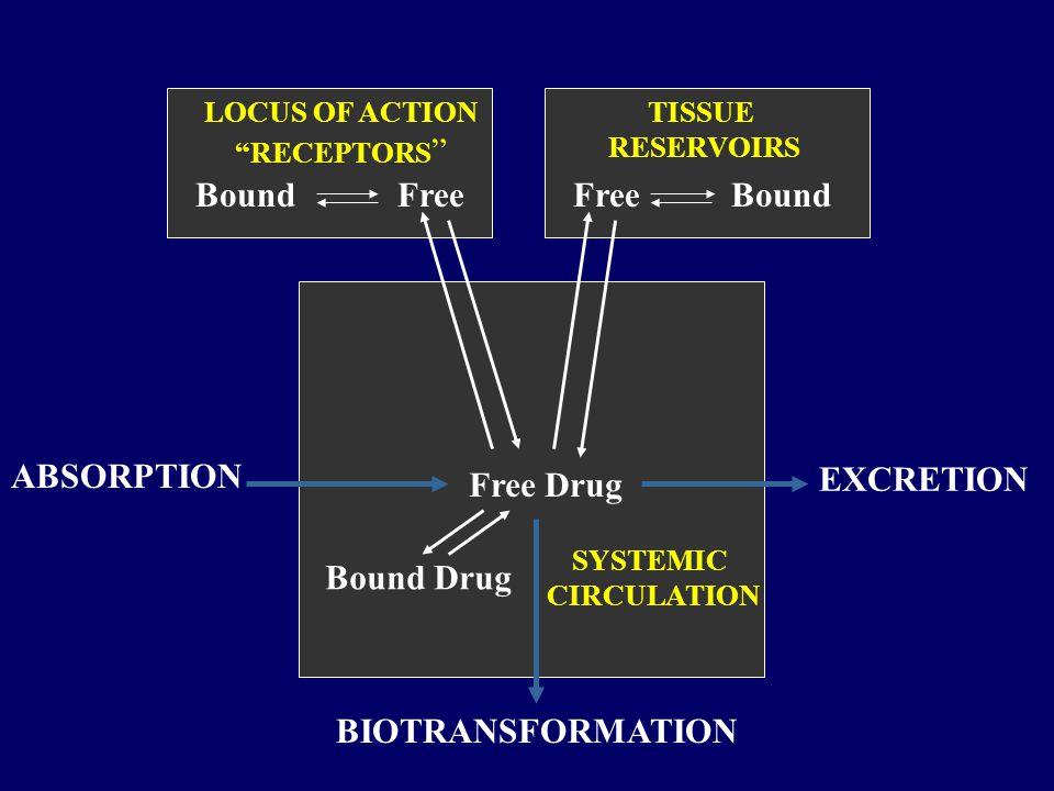 BoundFree Bound LOCUS OF ACTION RECEPTORS TISSUE RESERVOIRS SYSTEMIC CIRCULATION Free Drug Bound Drug ABSORPTION EXCRETION BIOTRANSFORMATION
