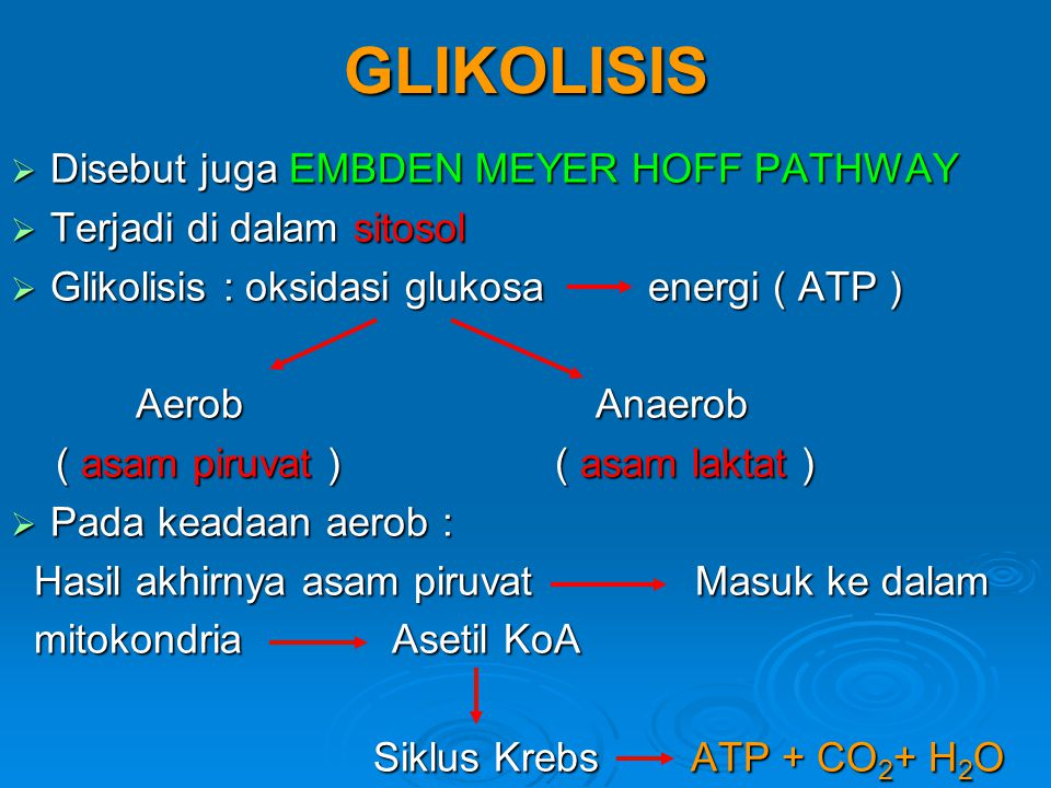 GLIKOLISIS  Disebut juga EMBDEN MEYER HOFF PATHWAY  Terjadi di dalam sitosol  Glikolisis : oksidasi glukosa energi ( ATP ) Aerob Anaerob Aerob Anae