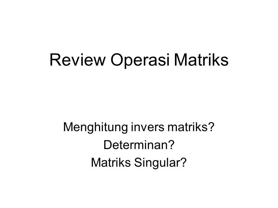 Review Operasi Matriks Menghitung invers matriks? Determinan? Matriks Singular?