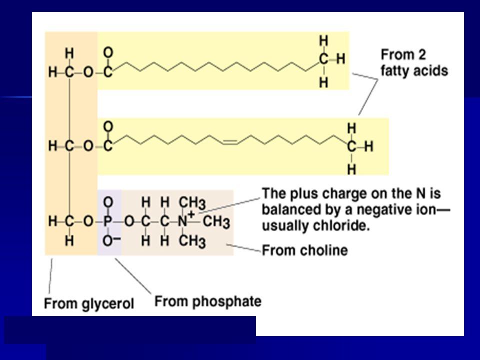 Suatu emulsi minyak dalam air dapat dibagi menjadi tiga fase: fase minyak, wilayah antarmuka, dan fase air Wilayah antarmuka Fase air Fase minyak r 