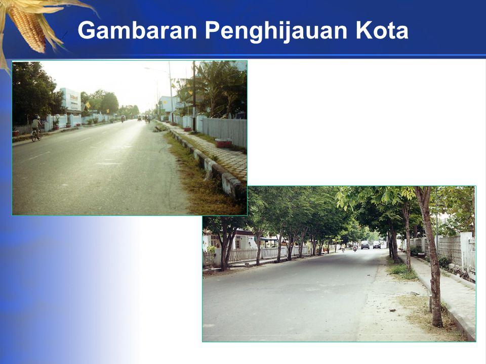 Gambaran Penghijauan Kota