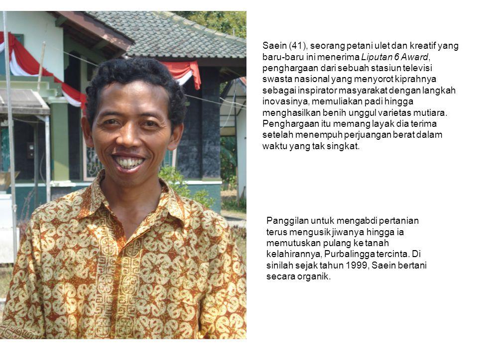 Saein (41), seorang petani ulet dan kreatif yang baru-baru ini menerima Liputan 6 Award, penghargaan dari sebuah stasiun televisi swasta nasional yang