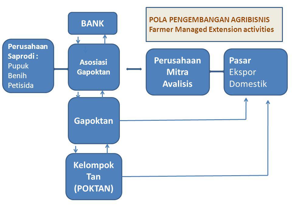 BANK Perusahaan Saprodi : Pupuk Benih Petisida Asosiasi Gapoktan Pasar Ekspor Domestik Perusahaan Mitra Avalisis Kelompok Tan (POKTAN) Gapoktan POLA P