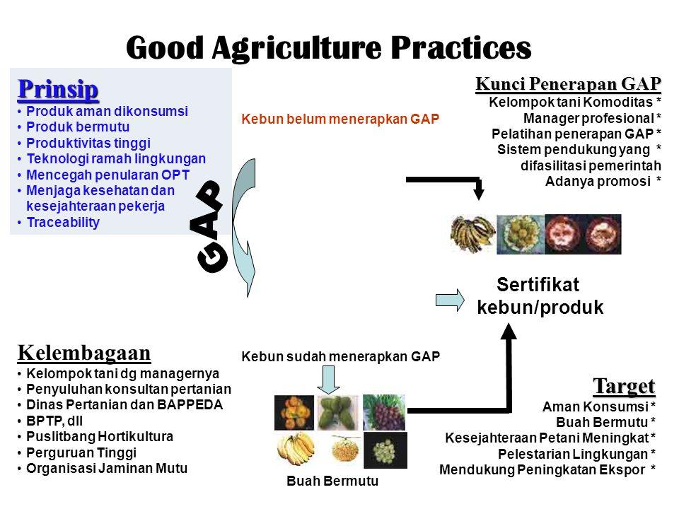 Good Agriculture Practices Prinsip Produk aman dikonsumsi Produk bermutu Produktivitas tinggi Teknologi ramah lingkungan Mencegah penularan OPT Menjag