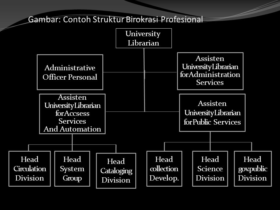 Gambar: Contoh Struktur Birokrasi Profesional University Librarian Administrative Officer Personal Assisten University Librarian for Accsess Services And Automation Assisten University Librarian for Administration Services Assisten University Librarian for Public Services Head Circulation Division Head System Group Head Cataloging Division Head collection Develop.
