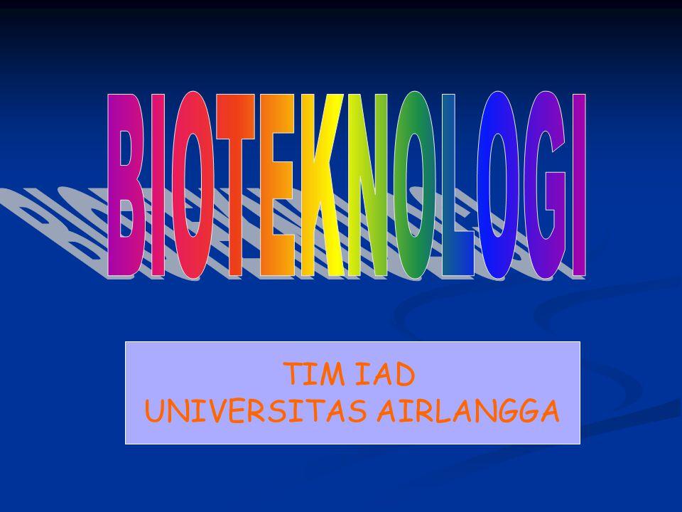TIM IAD UNIVERSITAS AIRLANGGA