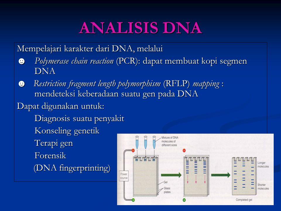 ANALISIS DNA Mempelajari karakter dari DNA, melalui ☻ Polymerase chain reaction (PCR): dapat membuat kopi segmen DNA ☻ Restriction fragment length pol