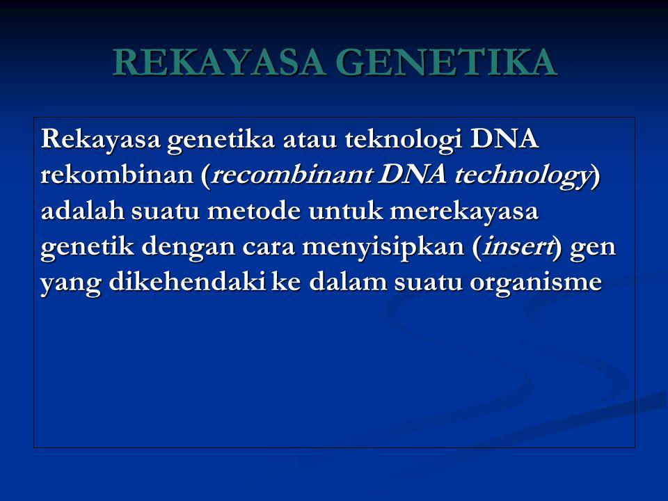 REKAYASA GENETIKA Rekayasa genetika atau teknologi DNA rekombinan (recombinant DNA technology) adalah suatu metode untuk merekayasa genetik dengan car