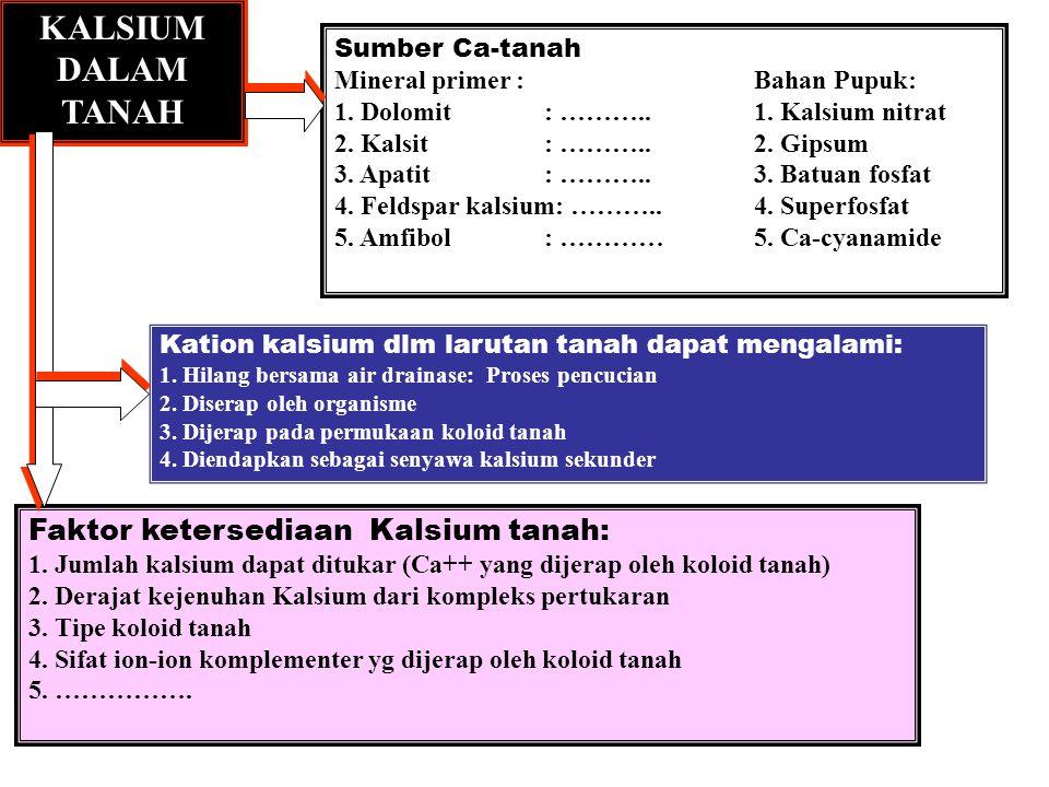KALSIUM DALAM TANAH Sumber Ca-tanah Mineral primer :Bahan Pupuk: 1.