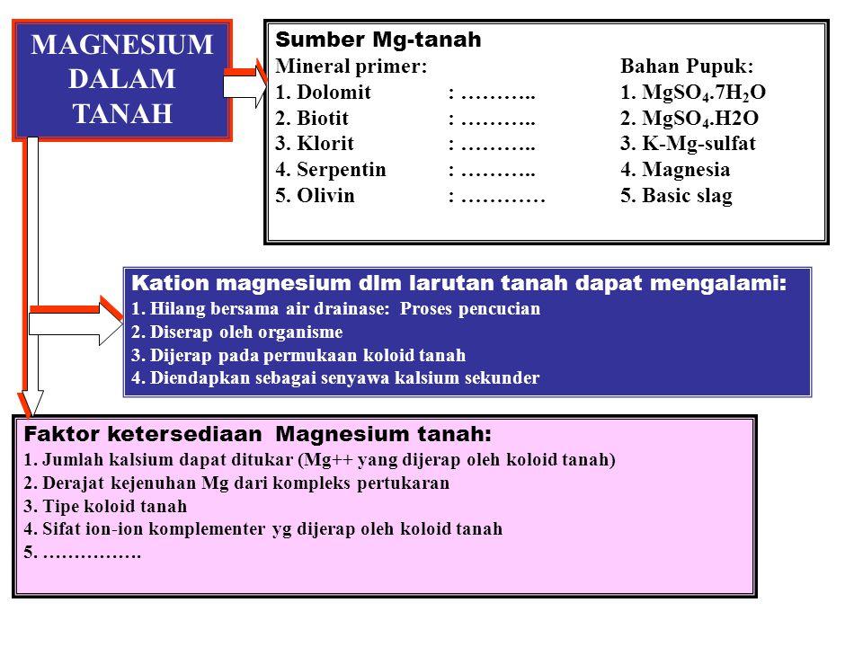 MAGNESIUM DALAM TANAH Sumber Mg-tanah Mineral primer:Bahan Pupuk: 1.