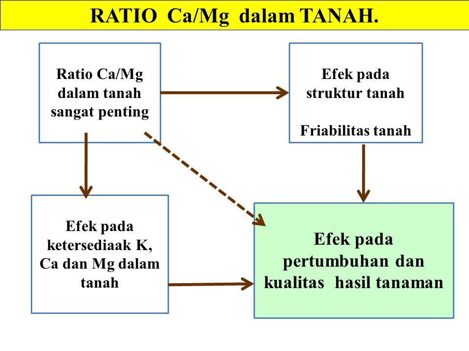 RATIO Ca/Mg dalam TANAH.
