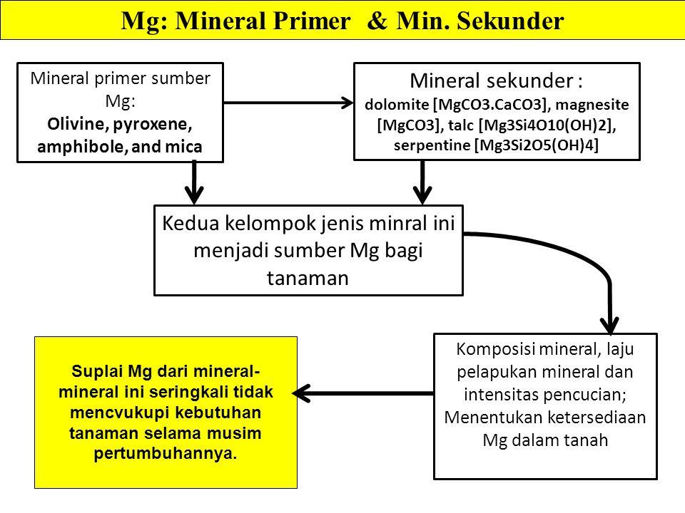 Suplai Mg dari mineral- mineral ini seringkali tidak mencvukupi kebutuhan tanaman selama musim pertumbuhannya.