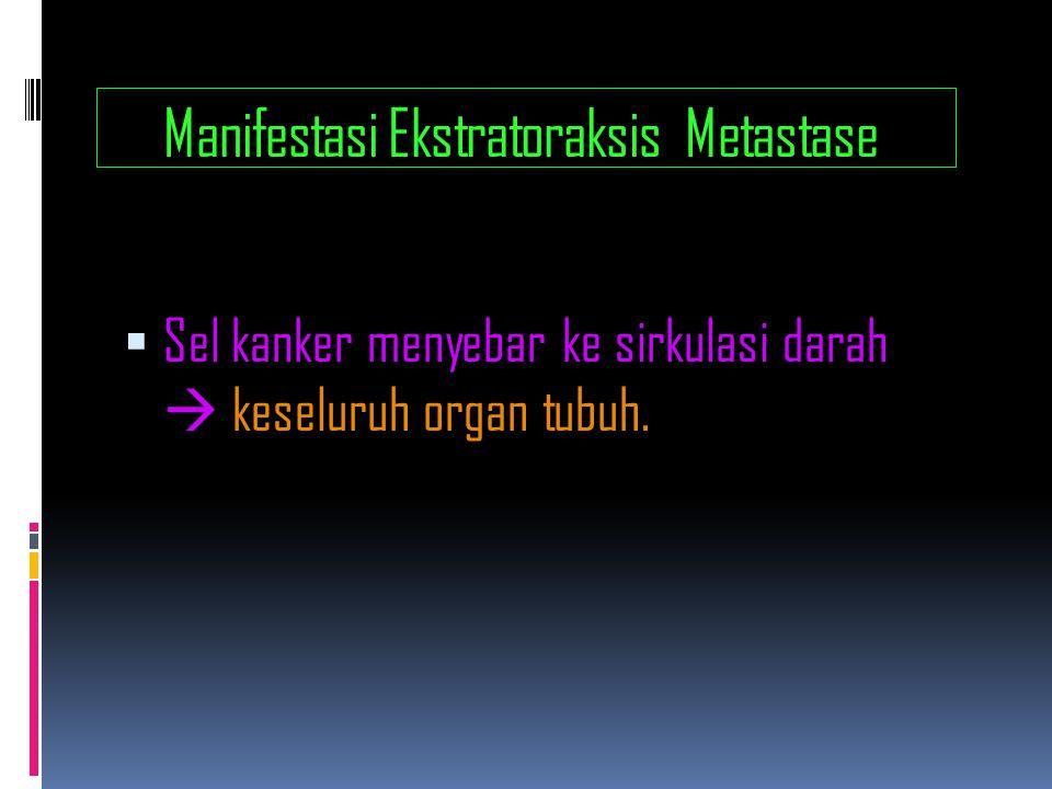 Manifestasi Ekstratoraksis Metastase  Sel kanker menyebar ke sirkulasi darah  keseluruh organ tubuh.