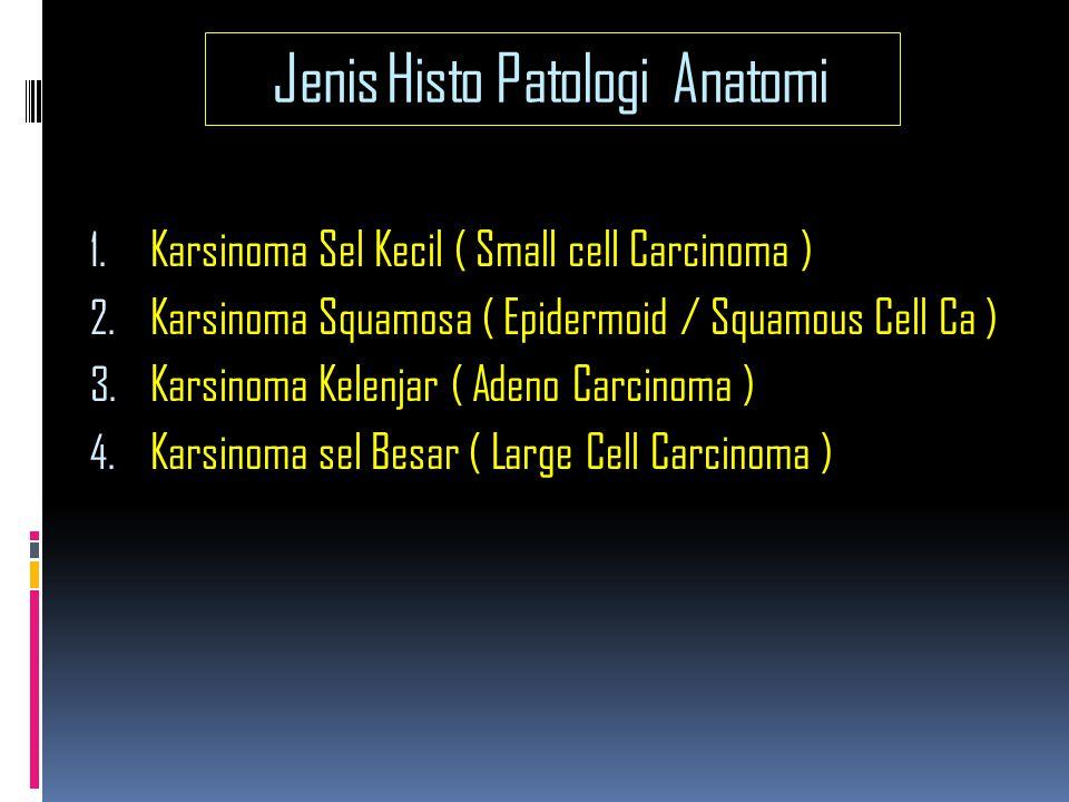 Jenis Histo Patologi Anatomi 1.Karsinoma Sel Kecil ( Small cell Carcinoma ) 2.