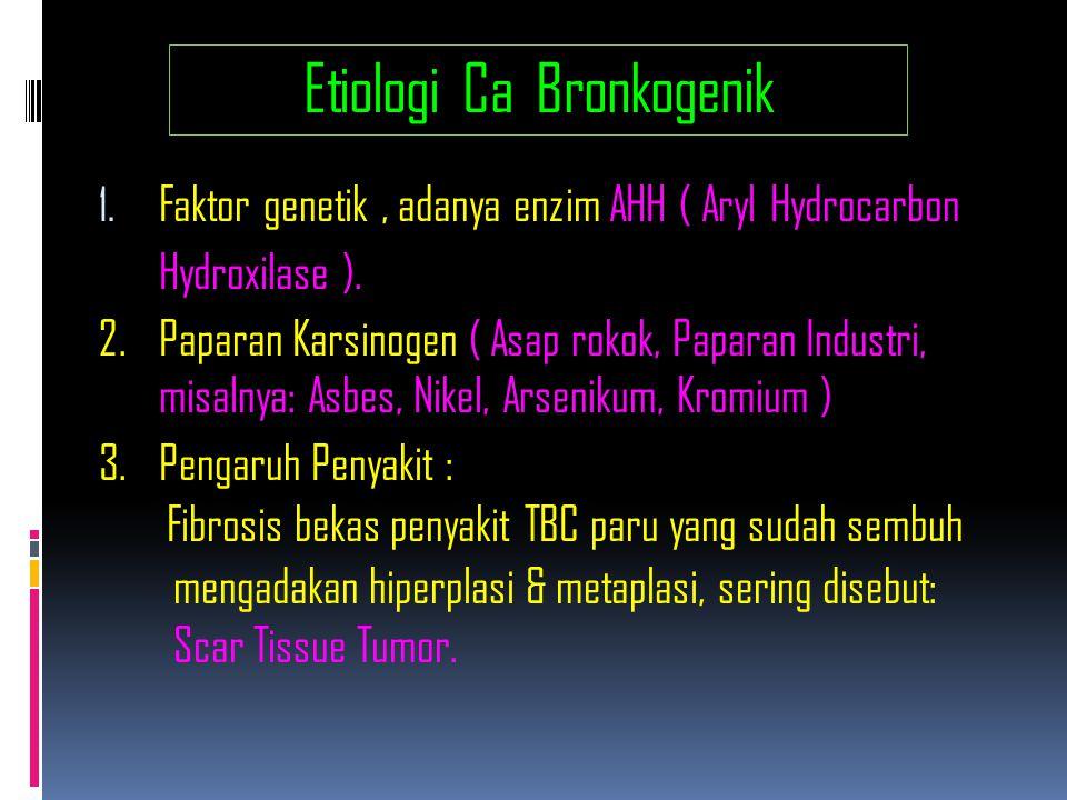 Prognose Carcinoma Bronkogenik StadiumStadium KlinisStadium Bedah NSCLC : 5 years survival I A (T1N0M0) IB ( T2N0M0) IIA ( T1N1M0) IIB ( T2N1M0, T3N0M0 ) IIIA IIIB IV Stadium SCLC : 2 years survival Limited Extensive ( setelah Reseksi ) 60 % 38 % 34 % 23 % 9 – 13 % 3 – 7 % 1 % Stadium Klinis ( setelah Kemoterapi ) 15 – 20 % < 3 % 74 % 61 % 55 % 39 % 22 % Stadium Bedah 14 – 20 bulan 8 – 13 bulan