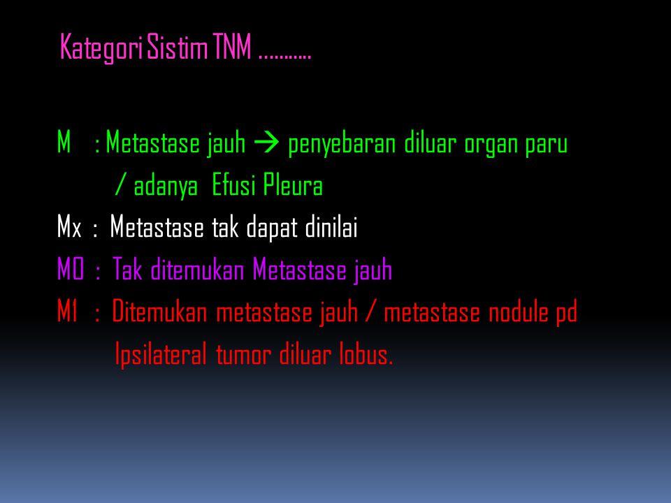 Kategori Sistim TNM...........
