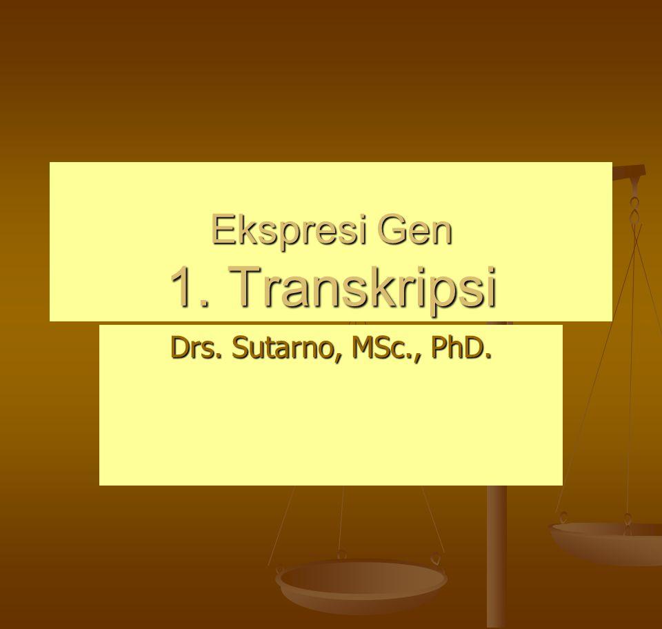 Ekspresi Gen 1. Transkripsi Drs. Sutarno, MSc., PhD.