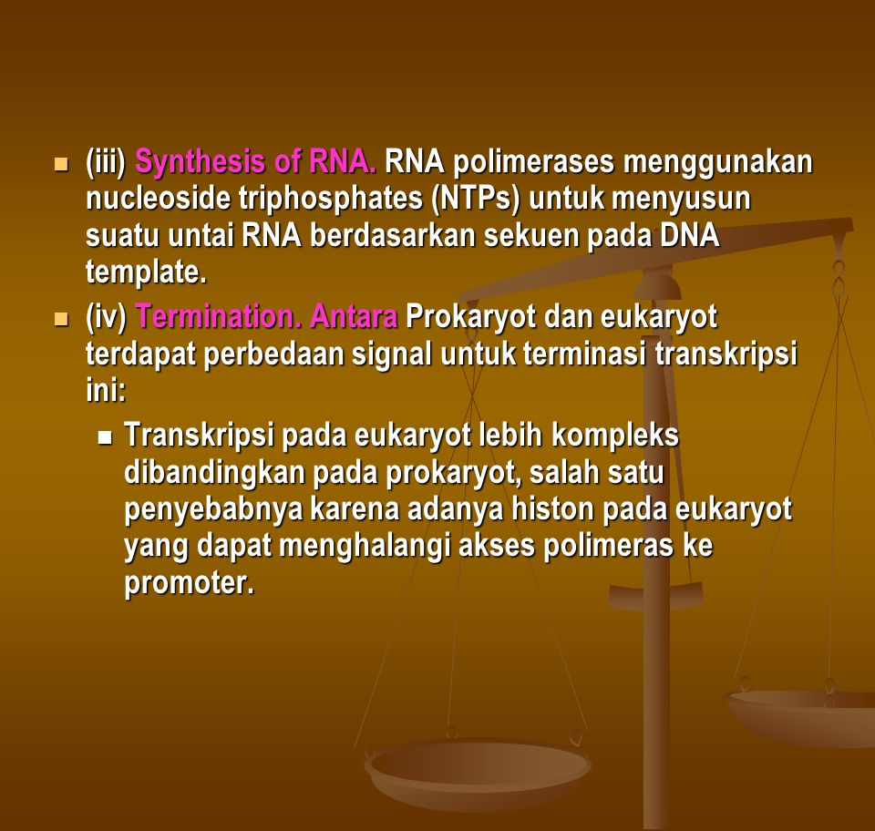 (iii) Synthesis of RNA.