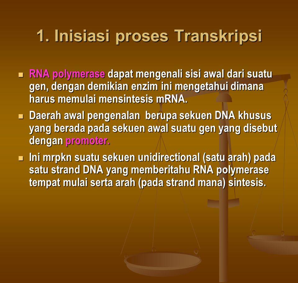 1. Inisiasi proses Transkripsi RNA polymerase dapat mengenali sisi awal dari suatu gen, dengan demikian enzim ini mengetahui dimana harus memulai mens