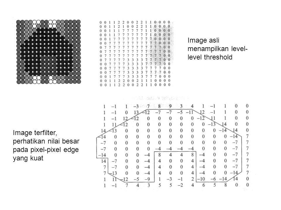 Image asli menampilkan level- level threshold Image terfilter, perhatikan nilai besar pada pixel-pixel edge yang kuat