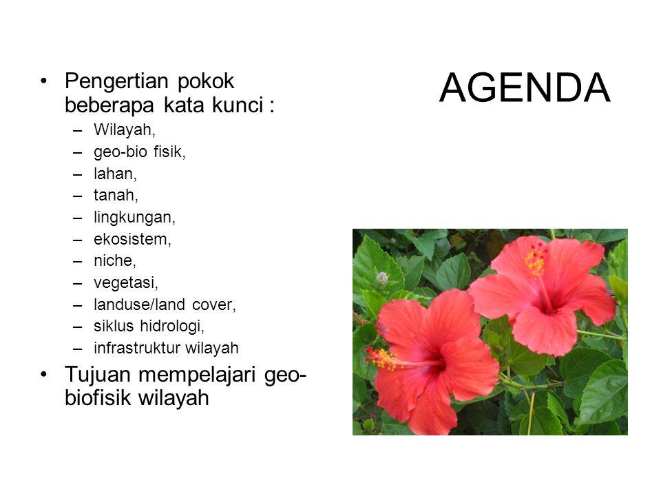 AGENDA Pengertian pokok beberapa kata kunci : –Wilayah, –geo-bio fisik, –lahan, –tanah, –lingkungan, –ekosistem, –niche, –vegetasi, –landuse/land cove