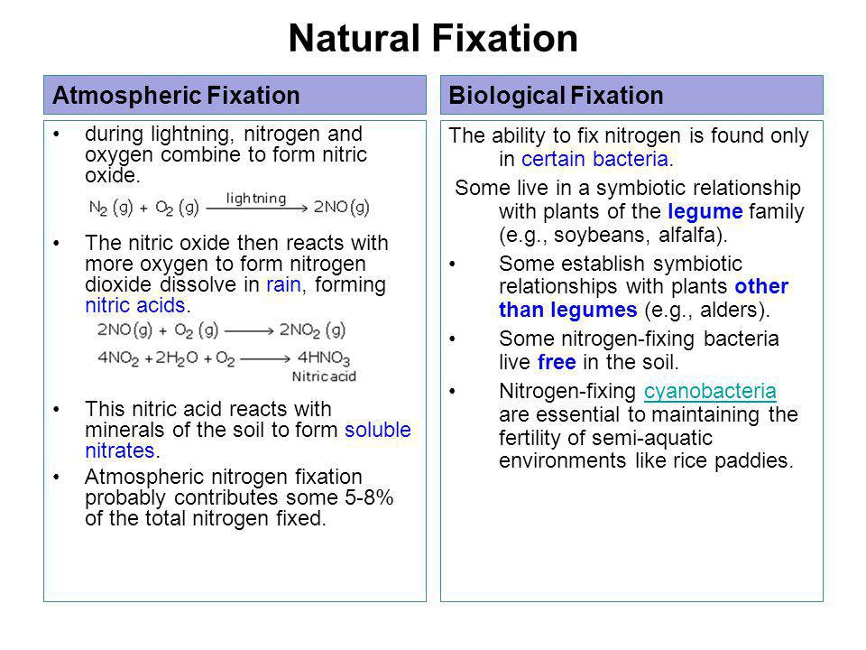 Natural Fixation Atmospheric Fixation during lightning, nitrogen and oxygen combine to form nitric oxide.