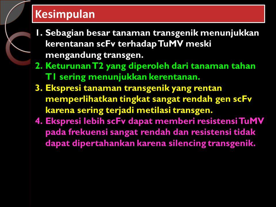Kesimpulan 1.Sebagian besar tanaman transgenik menunjukkan kerentanan scFv terhadap TuMV meski mengandung transgen.