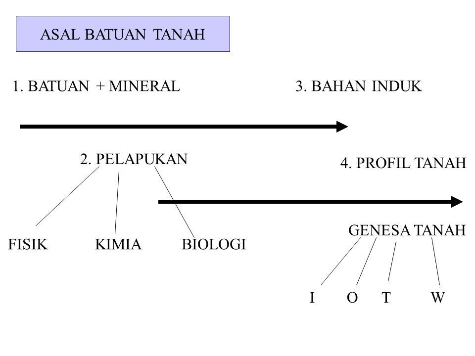 ASAL BATUAN TANAH 1. BATUAN + MINERAL 3. BAHAN INDUK 2. PELAPUKAN 4. PROFIL TANAH GENESA TANAH I O T W FISIK KIMIA BIOLOGI