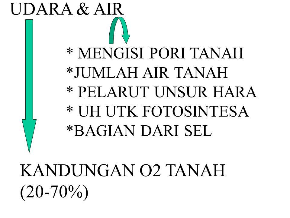 UDARA & AIR * MENGISI PORI TANAH *JUMLAH AIR TANAH * PELARUT UNSUR HARA * UH UTK FOTOSINTESA *BAGIAN DARI SEL KANDUNGAN O2 TANAH (20-70%)