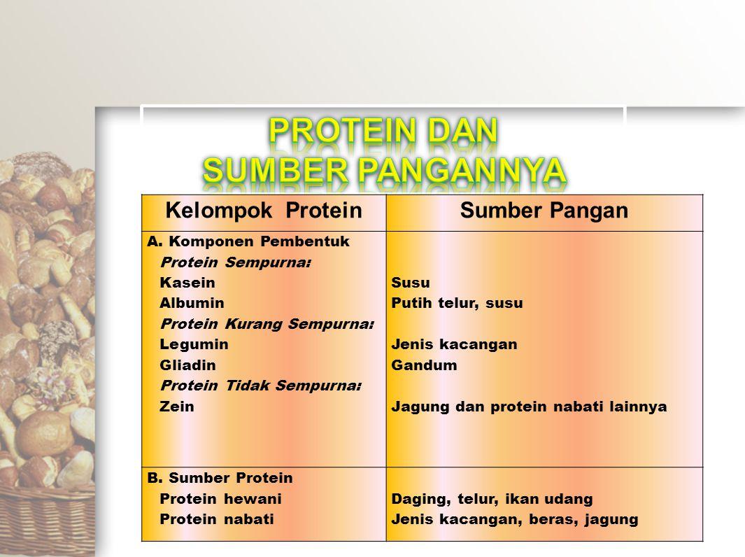 Kelompok ProteinSumber Pangan A. Komponen Pembentuk Protein Sempurna: Kasein Albumin Protein Kurang Sempurna: Legumin Gliadin Protein Tidak Sempurna: