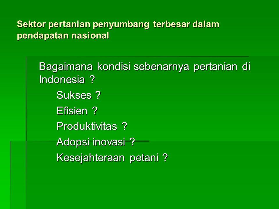 Sektor pertanian penyumbang terbesar dalam pendapatan nasional Bagaimana kondisi sebenarnya pertanian di Indonesia ? Sukses ? Efisien ? Produktivitas