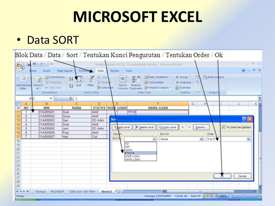 MICROSOFT EXCEL Data SORT