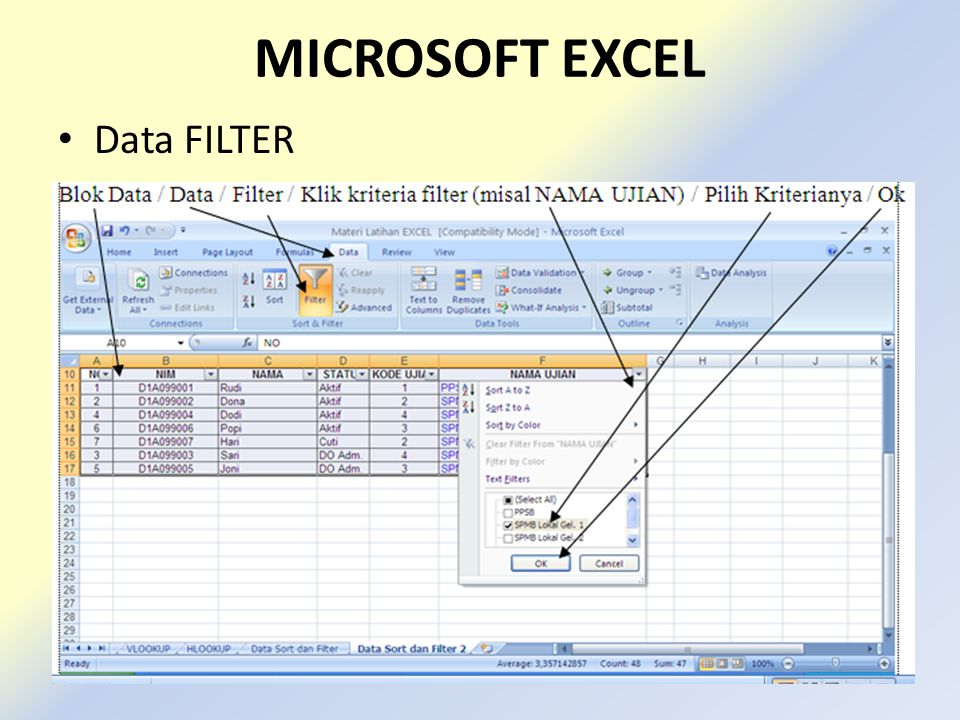 MICROSOFT EXCEL Data FILTER