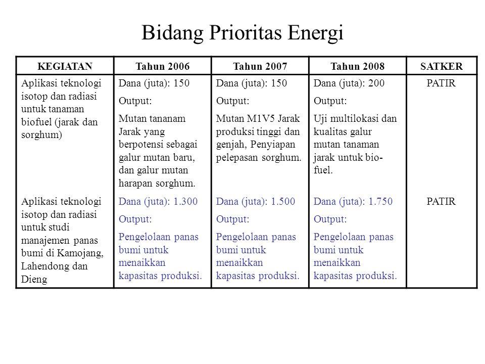 Bidang Prioritas Energi KEGIATANTahun 2006Tahun 2007Tahun 2008SATKER Aplikasi teknologi isotop dan radiasi untuk tanaman biofuel (jarak dan sorghum) Dana (juta): 150 Dana (juta): 200PATIR Output: Mutan tananam Jarak yang berpotensi sebagai galur mutan baru, dan galur mutan harapan sorghum.