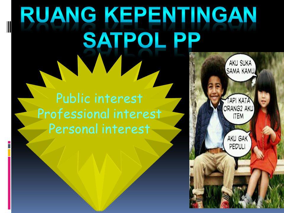 Public interest Professional interest Personal interest